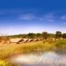 Hayward Safaris Accommodation