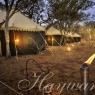 Hayward Safaris Camp Ambience