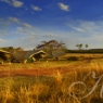 Haywards Safaris view