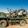 Haywards Safaris Wildlife