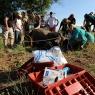 Haywards Safaris Rhino Veterinary Work