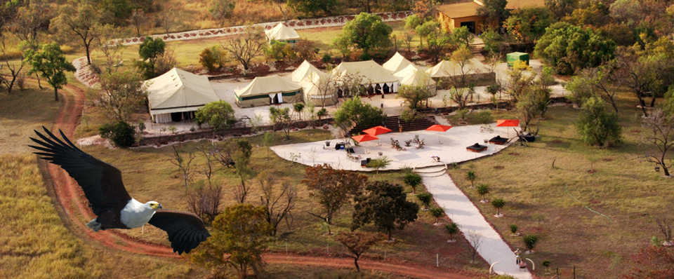 INDUSTRY RECOGNITION FOR MICE PROFESSIONALISM IN LUXURY SAFARI EXPEDITIONS