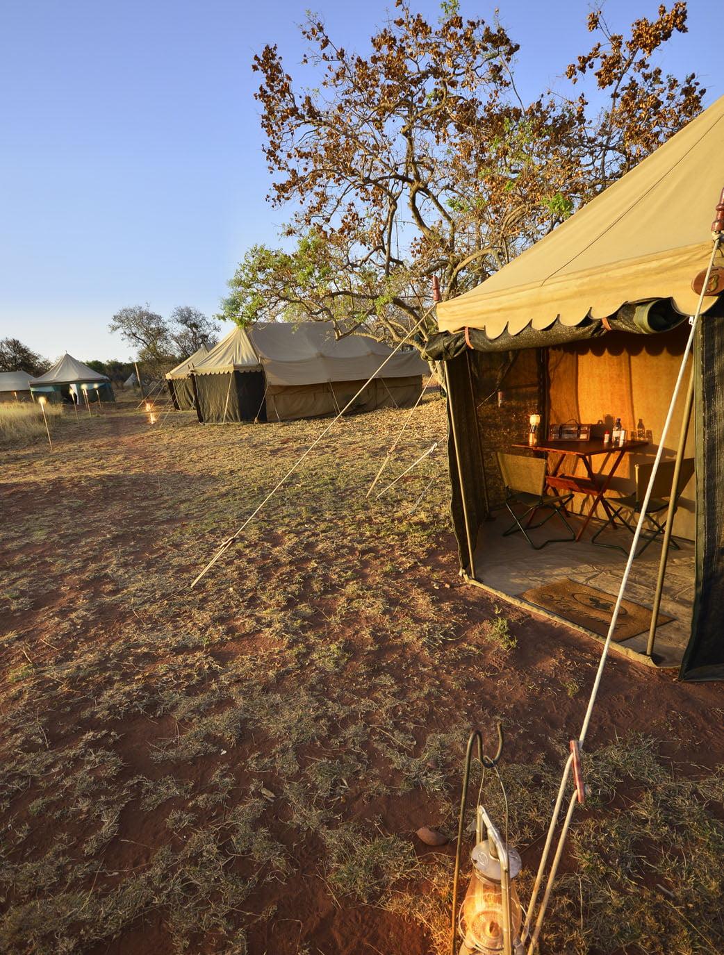 Kalahari Transfrontier Park