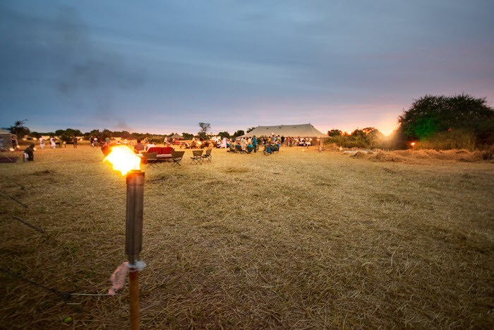 SAFARI – THE EXPERIENTIAL BLOOM
