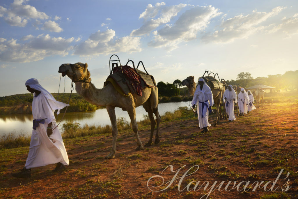 Authentic African mobile safari with Hayward's Safaris